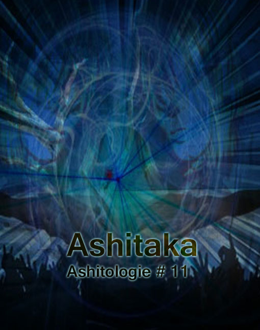 Ashitologie #11